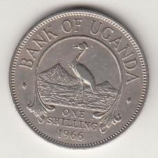монета 1 шиллинг, Уганда, 1966год , стоимость , цена